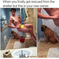 😂😂 that poor dogs face & life @gifwars I can't 😭😫 go and follow the always funny @gifwars @gifwars rp @masipopal hoodmemes tweegram codmemesftw beer lmao laughing cocktail drinkup thirsty glass photooftheday memestagram witty bar slurp funnymemes funnypictures fun drinks haha lmfao friends drink silly omg: When you finally get rescued from the  shelter but this is your new owner.  @Masi Popal 😂😂 that poor dogs face & life @gifwars I can't 😭😫 go and follow the always funny @gifwars @gifwars rp @masipopal hoodmemes tweegram codmemesftw beer lmao laughing cocktail drinkup thirsty glass photooftheday memestagram witty bar slurp funnymemes funnypictures fun drinks haha lmfao friends drink silly omg