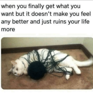 Me irl: when you finally get what you  want but it doesn't make you feel  any better and just ruins your life  more Me irl