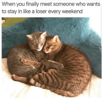 Latinos, Memes, and Mexican: When you finally meet someone who wants  to stay in like a loser every weekend Awww 🤗🤗😊😊😂😂 🔥 Follow Us 👉 @latinoswithattitude 🔥 latinosbelike latinasbelike latinoproblems mexicansbelike mexican mexicanproblems hispanicsbelike hispanic hispanicproblems latina latinas latino latinos hispanicsbelike