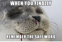 Seal, Word, and Amp: WHEN YOU  FINALLY  REMEMBER THE SAFE WORD <p>Introducing S&amp;M Satisfied Seal.</p>