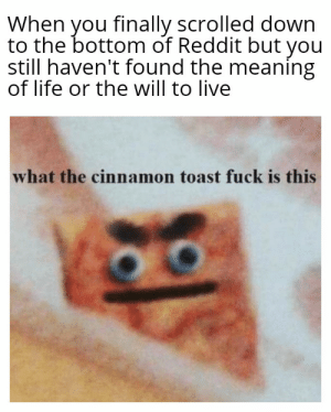 Life, Reddit, and Fuck: When you finally scrolled down  to the bottom of Reddit but you  still haven't found the meaning  of life or the will to live  what the cinnamon toast fuck is this This is for you. Just go to bed already