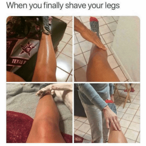 Funny, Memes, and Texas: When you finally shave your legs  TEXAS SarcasmOnly