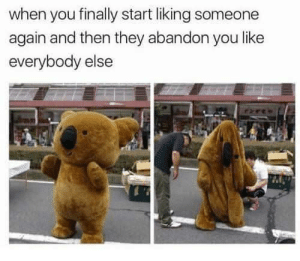 Abandoned yet again by Holofan4life FOLLOW 4 MORE MEMES.: when you finally start liking someone  again and then they abandon you like  everybody else  ree Abandoned yet again by Holofan4life FOLLOW 4 MORE MEMES.