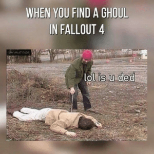 Basically in any fallout: WHEN YOU FIND A GHOUL  IN FALLOUT 4  lolis.u ded Basically in any fallout
