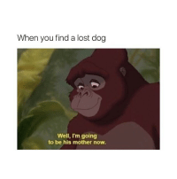 Dogs, Love, and Lost: When you find a lost dog  Well, I'm going  to be his mother now. i love dogs