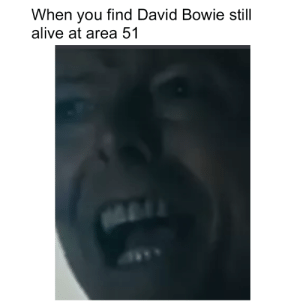 Alive, David Bowie, and Dank Memes: When you find David Bowie still  alive at area 51 Starman, waiting in the sky