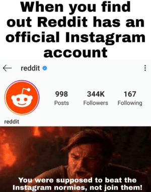 You became the very thing you were meany to destory: When you find  out Reddit has an  official Instagram  account  reddit  998  344K  167  Following  Followers  Posts  reddit  You were supposed to beat the  Instagram normies, not join them! You became the very thing you were meany to destory