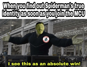 I don't really need pictures of Spiderman..: When you find out Spiderman's true  identity as soon as you join the MCU  HARVER  TIND  OPOS  I see this as an absolute win!  CHINL I don't really need pictures of Spiderman..