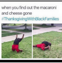 Blackpeopletwitter, Thanksgiving With Black Families, and Got: when you find out the macaroni  and cheese gone  <p>All they got is collards now (via /r/BlackPeopleTwitter)</p>
