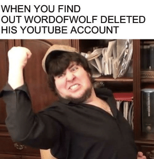 Finally, less negativity in my suggestion box: WHEN YOU FIND  OUT WORDOFWOLF DELETED  HIS YOUTUBE ACCOUNT Finally, less negativity in my suggestion box