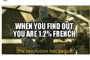 Welcome to the guillotine mothafuckas: WHEN YOU FIND OUT  YOU ARE 12% FRENCH  The revolution has begum!' Welcome to the guillotine mothafuckas