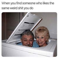 Love, Memes, and Omg: When you find someone who likes the  same weird shit you do Omg 🤣😂 Follow my love @thespeckyblonde @thespeckyblonde @thespeckyblonde @thespeckyblonde