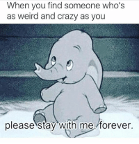 Crazy, Memes, and Forever: When you find someone who's  as weird and crazy as you  please stay with me forever.