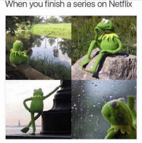 Friends, Memes, and Netflix: When you finish a series on Netflix Dm this to 5 friends if you've been here 😫