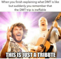 dmt trip: When you finish explaining what DMT is like  but suddenly you remember that  the DMT trip is ineffable  THISISJUSTA TRIBUTE