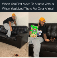 Bad, Memes, and Atlanta: When You First Move To Atlanta Versus  When You Lived There For Over A Year!  KS These Roaches Ain't So Bad After All. 😂😂 WaterBugs Roaches Atlanta
