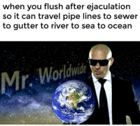 "Dank, Fucking, and Meme: when you flush after ejaculation  so it can travel pipe lines to sewer  to gutter to river to sea to ocean  Mr, Worldwide <p>Mr. Fucking Worldwide via /r/dank_meme <a href=""http://ift.tt/2iiGq4P"">http://ift.tt/2iiGq4P</a></p>"
