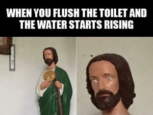 Jesus be scared of da Un-Holy water: WHEN YOU FLUSH THE TOILET AND  THE WATER STARTS RISING Jesus be scared of da Un-Holy water