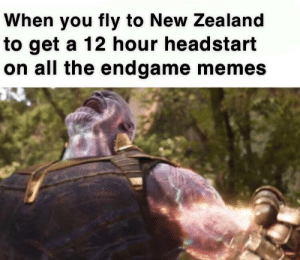 Memes, New Zealand, and Time: When you fly to New Zealand  to get a 12 hour headstart  on all the endgame memes The laws of time are mine