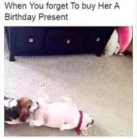 Birthday, Memes, and 🤖: When You forget To buy Her A  Birthday Present  3