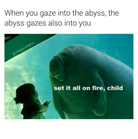 gaze into the abyss