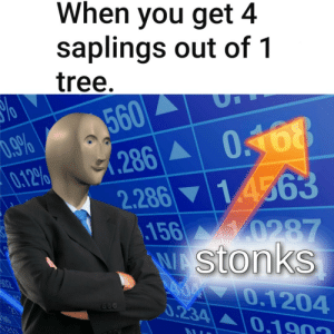 me_irl: When you get 4  saplings out of 1  tree.  560  286  2.286 14563  156 0287  WAStonks  A00 0.1204  0.9%  0.12%  0168  A02  0.234  0.1903  85  0.213 me_irl