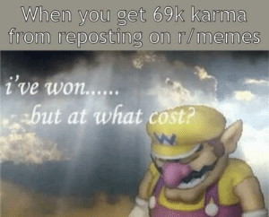 Purely hypothetical situation...: When you get 69k karma  from reposting on r/memes  i've won....  but at what cost? Purely hypothetical situation...