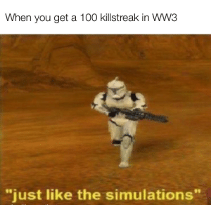 "Ah yes enslaved stupidity: When you get a 100 killstreak in WW3  ""just like the simulations"" Ah yes enslaved stupidity"