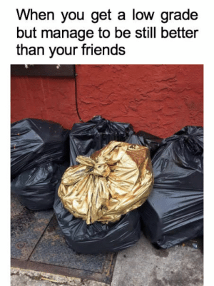 """Dank, Friends, and Memes: When you get a low grade  but manage to be still better  than your friends But the your mom goes :""""I don't care about the others""""… by rybeewoods FOLLOW 4 MORE MEMES."""