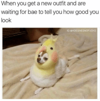 Bae, Fucking, and Good: When you get a new outfit and are  waiting for bae to tell you how good you  look  IG @HOEGIVESNOFUCKS Allllll i want is a fucking compliment 😩
