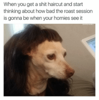 Bad, Haircut, and Memes: When you get a shit haircut and start  thinking about how bad the roast session  is gonna be when your homies see it  ecomfysweaters I might have to move to another city 😥 (@comfysweaters)