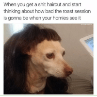 LMAO truth ComfySweaters: When you get a shit haircut and start  thinking about how bad the roast session  is gonna be when your homies see it  comtysweaters LMAO truth ComfySweaters