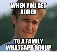Family, Memes, and Best: WHEN YOU GET  ADDED  TOA FAMILY  WHATSAPPGROUP  memes CCm Best 22 Group Memes