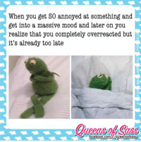 Memes, 🤖, and Massive: When you get annoyed at something and  get into a massive mood and later on you  realize that you completely overreacted but  it's already too late  facebook.com Aqueenoofsass 😡😠😐😑😳 #QueensofSass