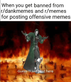 Funny, Memes, and Yo: When  you get banned from  r/dankmemes and r/memes  for posting offensive memes  -Guess ill just post here Fight me yo