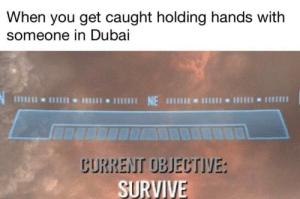 Dank, Memes, and Reddit: When you get caught holding hands with  someone in Dubai  NE 1  CURRENT OBJECTIVE:  SURVIVE Miss me with that by Whysong823 FOLLOW 4 MORE MEMES.