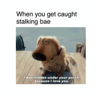 Bae, Dank, and Stalking: When you get caught  stalking bae  l was hidden under your porch  because I love you. ☺️☺️