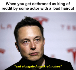 not that i would know: When you get dethroned as king of  reddit by some actor with a bad haircut  LA  TaN  *sad elongated muskrat noises* not that i would know