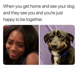 Best, Happy, and Home: When you get home and see your dog  and they see you and you're just  happy to be together. The best part of my day