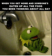 Funny Kermit Memes: WHEN YOU GET HOME AND SOMEONE'S  EATEN UP ALL THE FOOD  YOU BEEN THINKING ABOUT ALL DAY