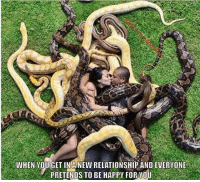 Memes, Snake, and Snakes: WHEN YOU GET IN A NEW RELATIONSHIP AND EVERYONE  PRETENDS TO BE HAPPY FOR YOU Snakes everywhere 😂 @funnycahitstrue