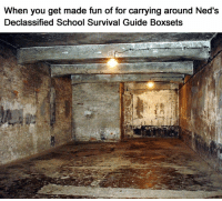 Gas Chamber Memes: When you get made fun of for carrying around Ned's  Declassified School Survival Guide Boxsets Gas Chamber Memes
