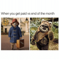 Memes, 🤖, and You: When you get paid vs end of the month Accurate 😏 goodgirlwithbadthoughts 💅🏽
