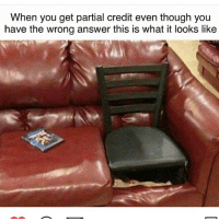 Memes, 🤖, and Answers: When you get partial credit even though you  have the wrong answer this is what it looks like badsciencejokes
