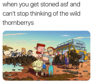 Wild, The Wild Thornberrys, and You: when you get stoned asf and  can't stop thinking of the wild  thornberrys