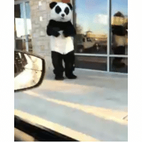 Funny, Wshh, and Panda: When you get that extra orange chicken at Panda Express 🔥 🔥 🔥 Via wshh