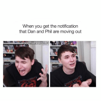 Memes, School, and youtube.com: When you get the notification  that Dan and Phil are moving out  Suchwhisks/VIG IM AT SCHOOL AND THE WIFI BLOCKS YOUTUBE AND I DONT GET HOME FOR 4 HOURS DO I USE CELL DATA - - - danandphil phan phandom f4f ifb dan howell danhowell phil lester phillester danisnotonfire amazingphil youtube tatinof proud danandphilgames protip dontcrycraft softandneat