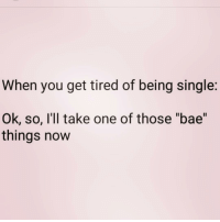 """@insta.single What do I do with a bae? Go follow my fav @insta.single @insta.single @insta.single: When you get tired of being single  Ok, so, I'll take one of those """"bae""""  things now @insta.single What do I do with a bae? Go follow my fav @insta.single @insta.single @insta.single"""