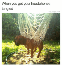 Memes, Headphones, and Help: When you get your headphones  tangled  The.purple.sock Help him (@the.purple.sock)