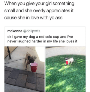 Ass, Life, and Love: When you give your girl something  small and she overly appreciates it  cause she in love with yo ass  mckenna @dollpxrts  ok I gave my dog a red solo cup and I've  never laughed harder in my life she loves it